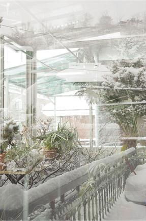 versus garden- green house .jpg