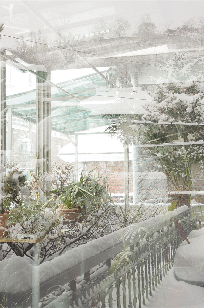 white and green house - versus garden