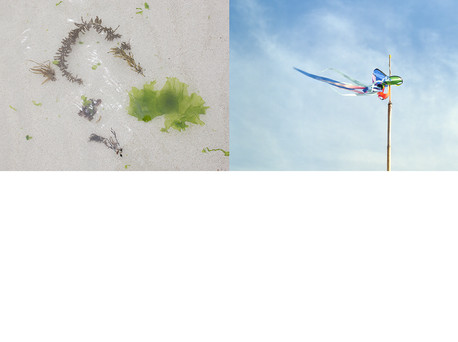 sway vs flutter 복사.jpg