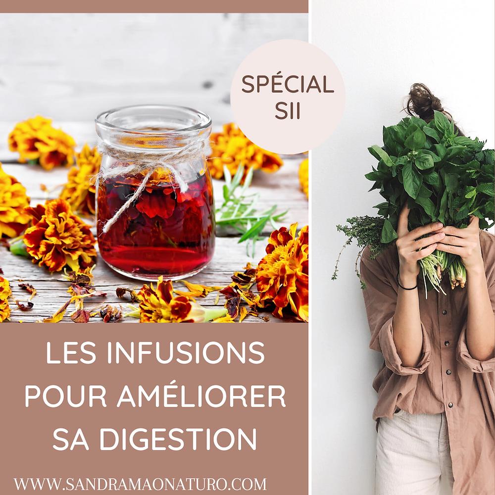 infusions naturelles digestion phytothérapie