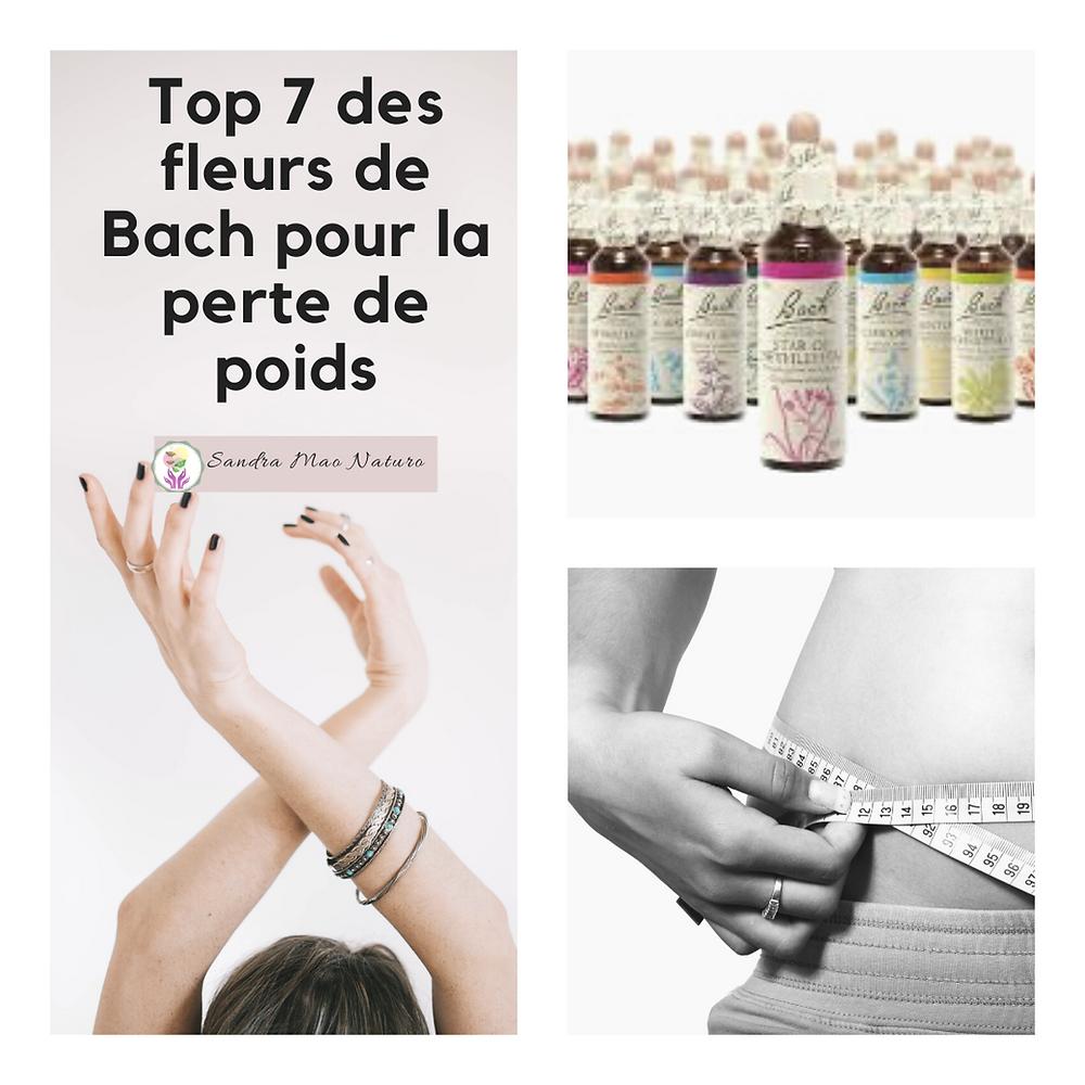 7 fleurs de Bach pour manger moins et perdre du poids