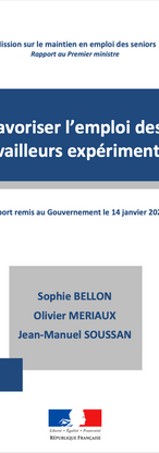 Rapport Bellon 2020