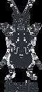 FEVIS Logo