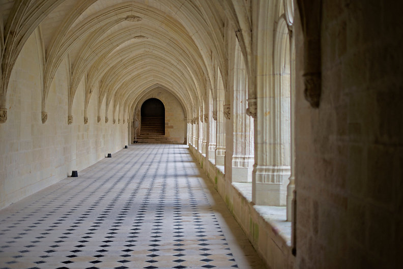 france-abbaye-Fontevraud-Touraine-nb-pho