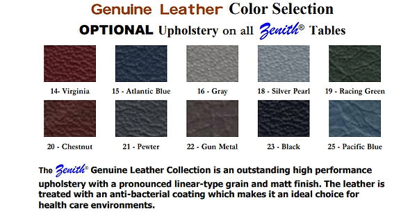Zenith Leather Colors.jpg