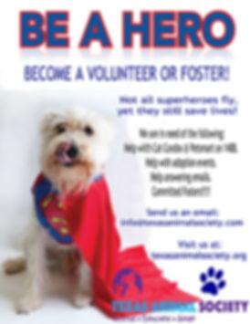 Volunteering Flyer (1).jpg