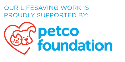 Petco Foundation Site Badge - White (1).