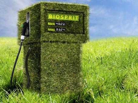Biogás y biometano, claves en la gestión de residuos orgánicos