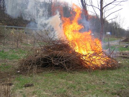 Gestión de Residuos: quema de restos de poda