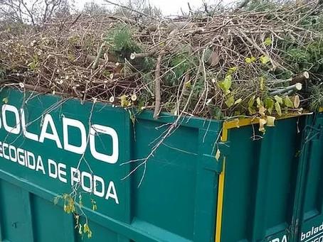 Los contenedores de poda en Las Rozas, claves para el premio 'Ciudad Arbórea del Mundo'