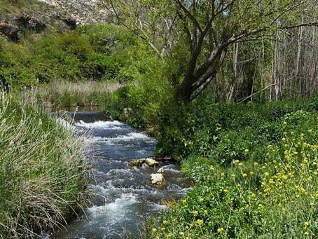 Se implementará un innovador sistema para depurar aguas residuales