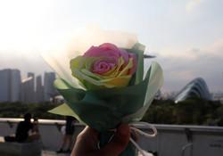 Soap Rose Bouquet Singapore