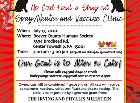 Free Spay/Neuter/Vaccine Clinic