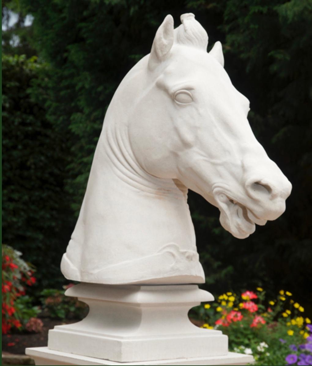 Equine Head - Hevosen pää