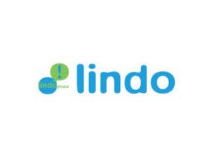LindoGrupa_logo-300x225.jpg