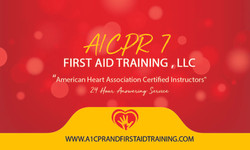 A1 CPR 2