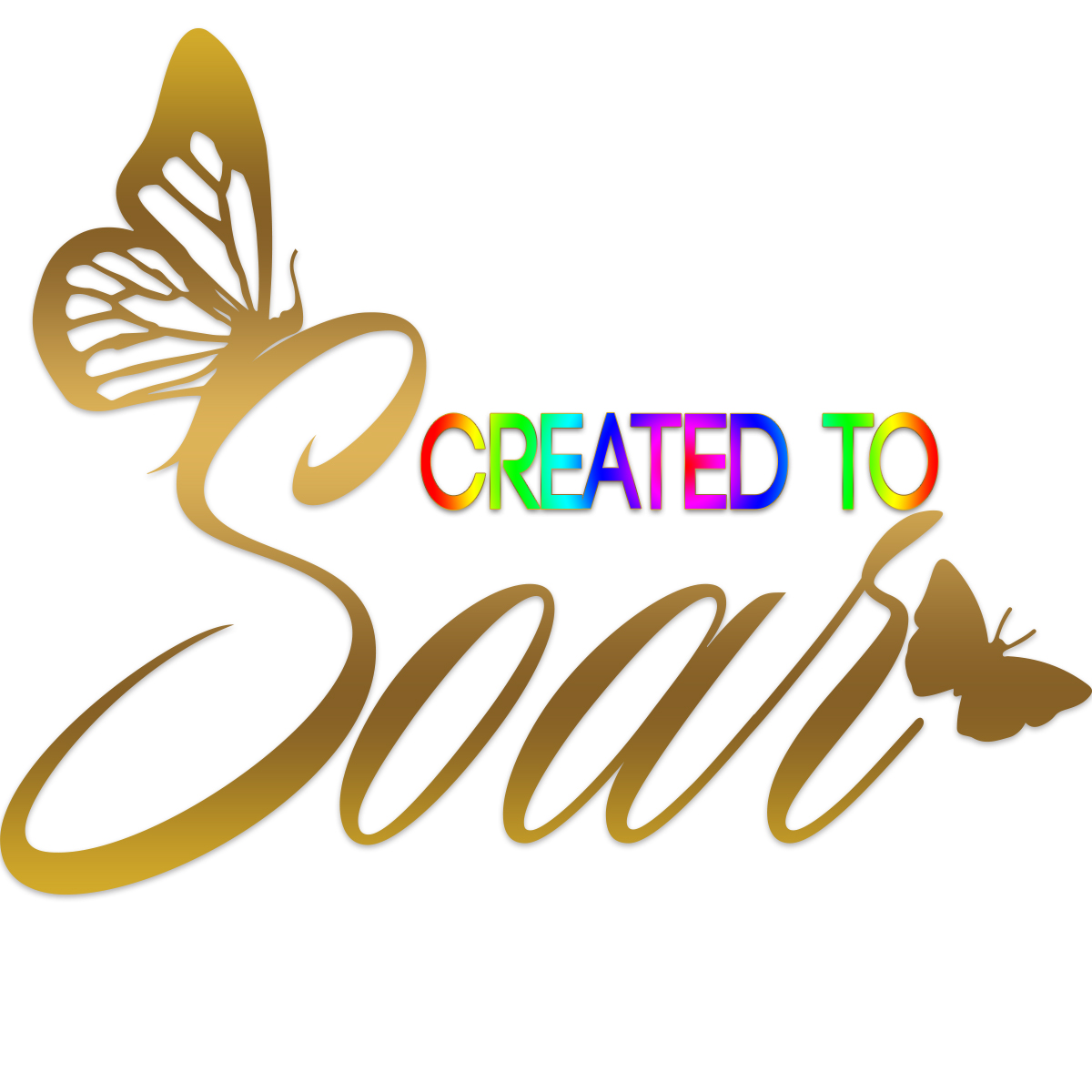 Created to Soar Kimberely