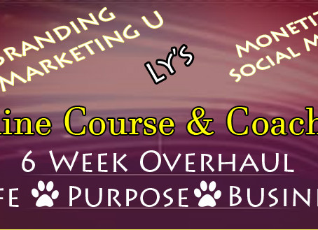 6 Week Overhaul - Online Course & Coaching