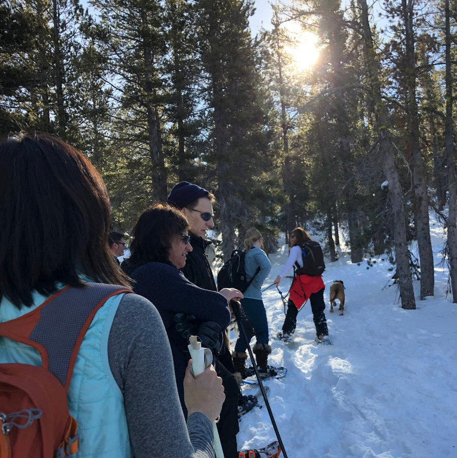 Snowshoe at Chickadee Ridge