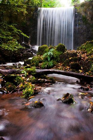cascade-flow-moss-1202982.jpg