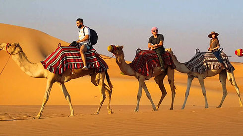 7 - desert fun - camels, sand dunes, cam
