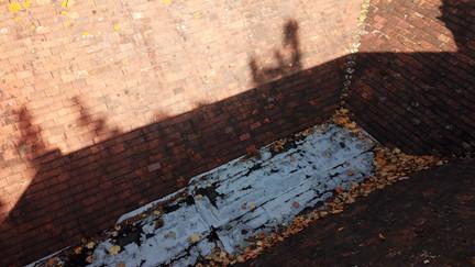 Roof Survey 5