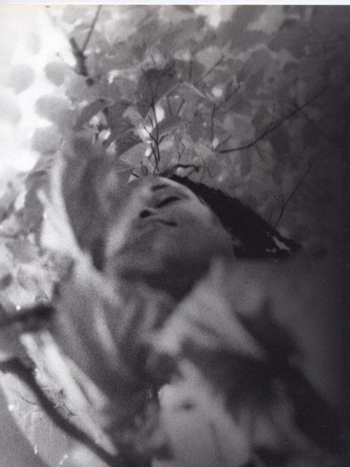 Ashanti in Trees