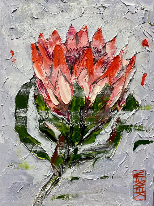 """Original, """"And here we have a Protea"""""""