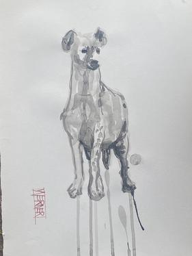 Hyena Study #5