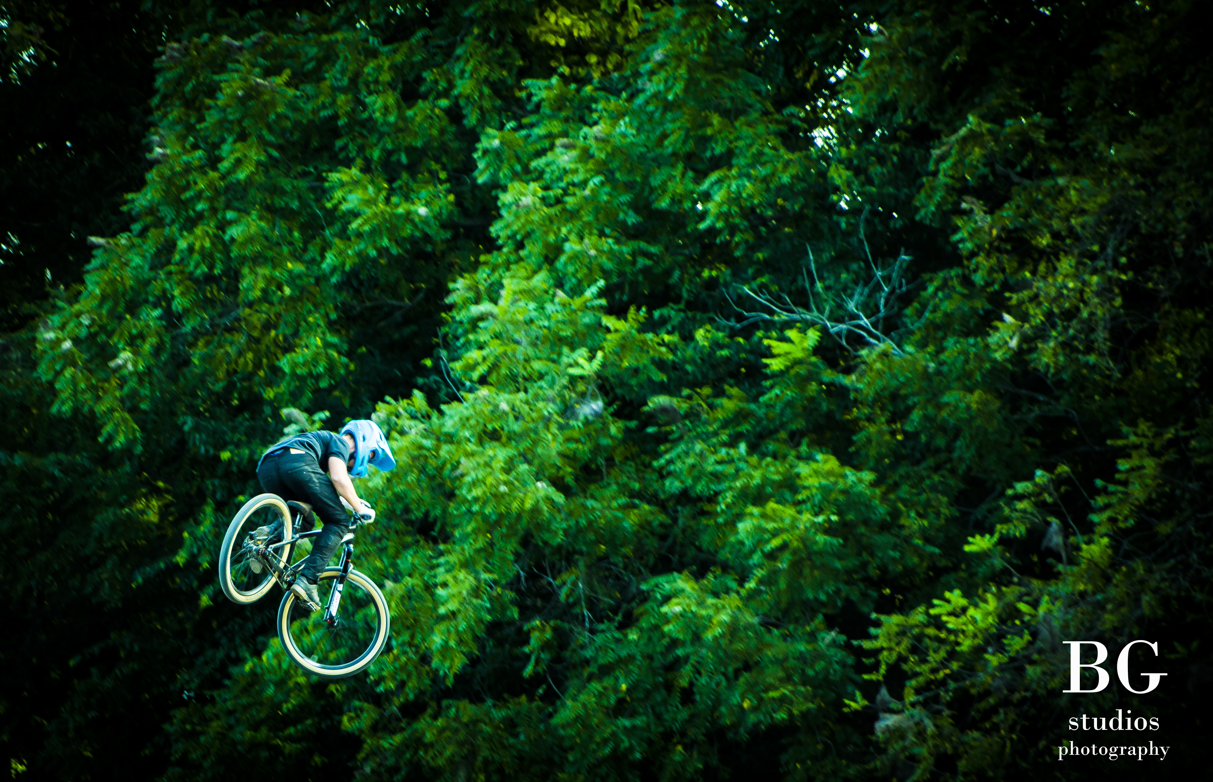 Jumping in the trees watermarked