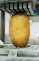 Wij komen oop locatie verse patat en snacks bakken