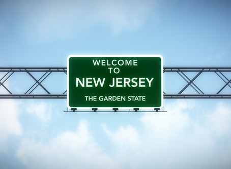 Environmental Due Diligence in the Garden State