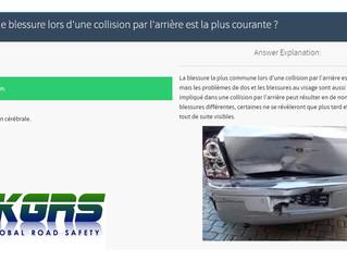 Bespoke Online Driver Training Modules