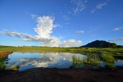 Reflections of Tsavo West