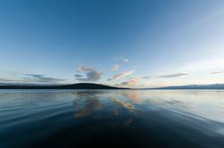 Naivasha Reflections
