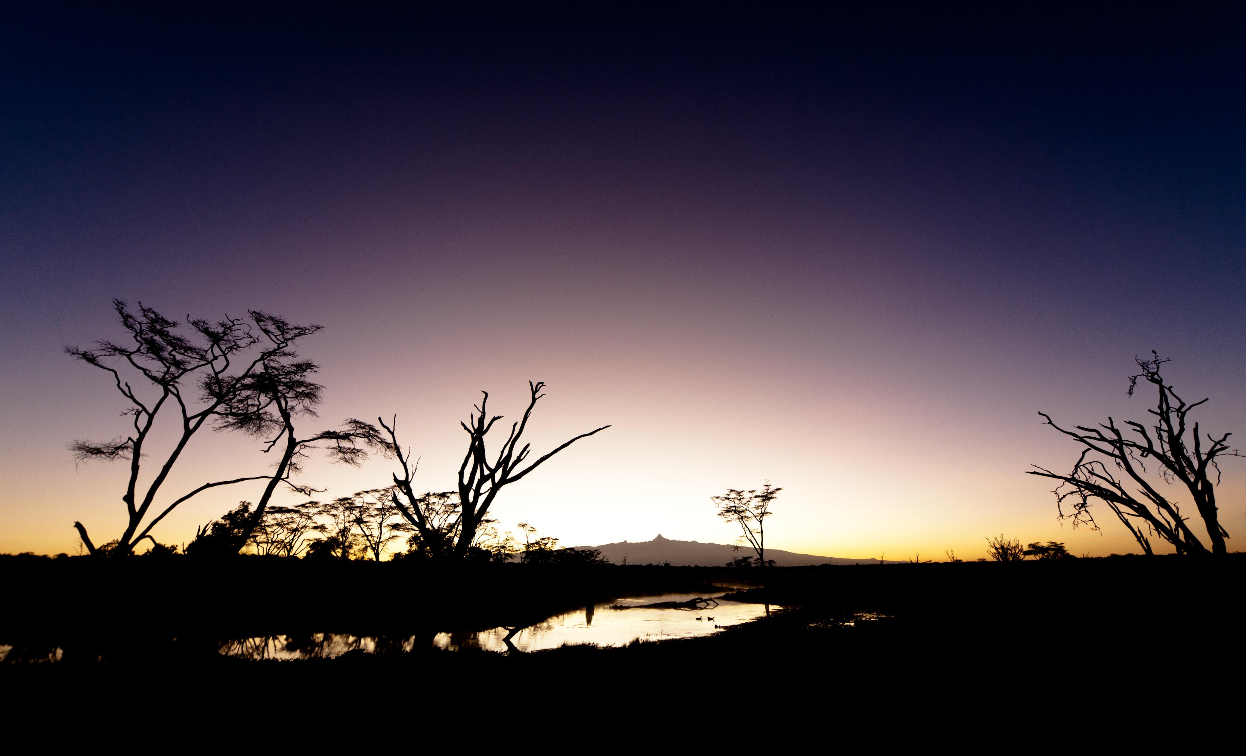 Laikipia Sunrise