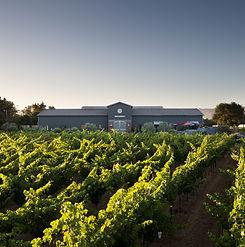 Eleven Eleven Winery.jpg