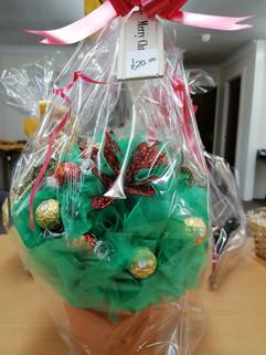 Luxury chocolate tree hamper £20