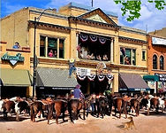 kh Rodeo Daze watermarked.jpg