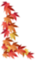 autumn-leaves-border.png