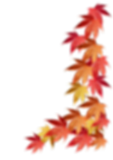 autumn-leaves-border 2.png