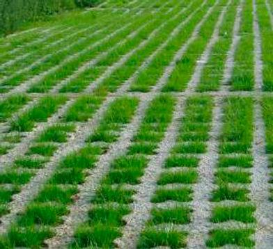 UC Verde in Grasscrete .jpg