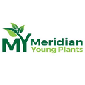 Meridian Young Plants.png