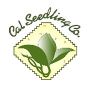 CalSeedling.png