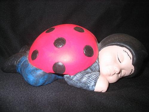 Sleeping Baby Ladybug
