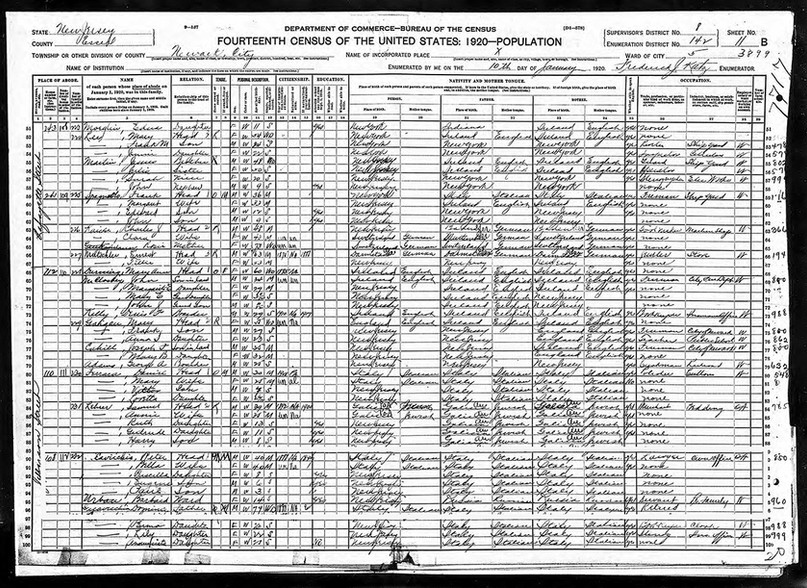 peter-a-cavicchia-1930-census.jpg
