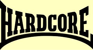 DO YOU LIKE HARDCORE?