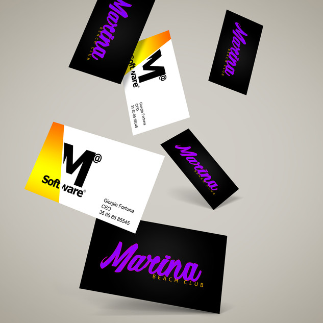 business cards marina beachclub and mad software.jpg