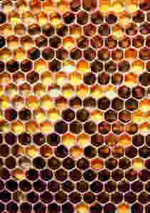 Inšpiráciou pre tvar nádob sa stal včelí plást.