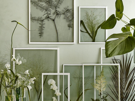 7 Shades of Green for Your Home in 2017